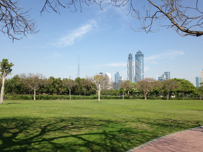 Al Safa Park and the Dubai Skyline