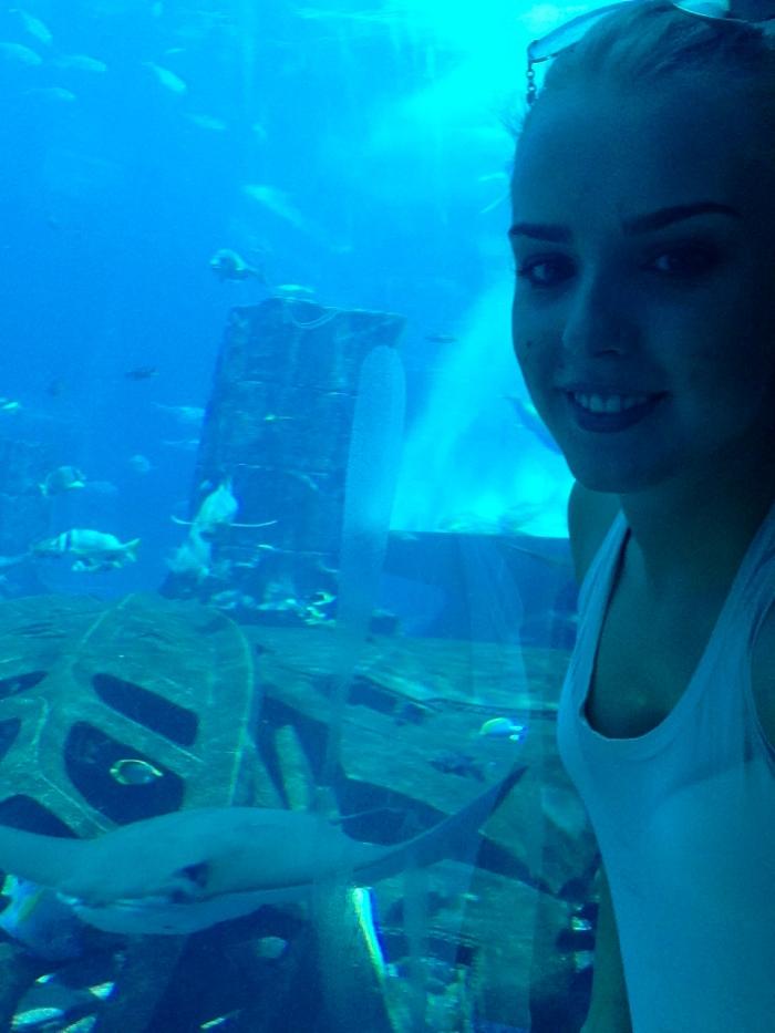 The Aquarium!