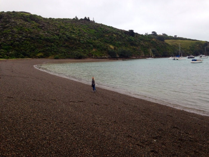 The beach at Waiheke Island